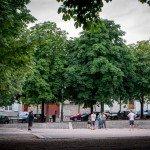 Place de Saint-Aignan 1