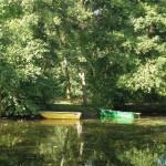 Les bords du Loiret 2