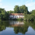 Les bords du Loiret 4