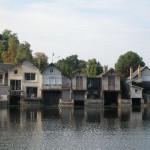 Les bords du Loiret 9