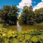 La source du Loiret 1
