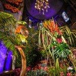 Ce week-end se déroulait la 207e fête de la Saint Fiacre 1