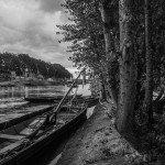 Festival de Loire : Mise à l'eau des derniers bateaux 3