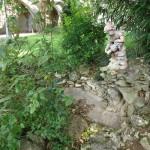 katjeulin nous a ramené de jolies photos du Jardin de l' Hôtel Groslot 6