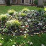 katjeulin nous a ramené de jolies photos du Jardin de l' Hôtel Groslot 7