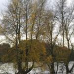 La Loire en toute simplicité !! 5