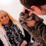 Quelques images de l'Exposition annuelle du chat qui se tient tout ce week-end au Parc des Expositions d'Orléans. 4