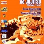 Une compétition organisée par l'USO Loiret Judo Jujitsu à ne pas manquer 1