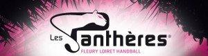 effectif-logo-pantheres