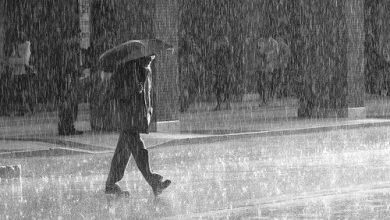 Photo of Que faire à Orléans par temps de pluie?