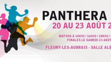 Photo de [Handball] : Le Programme de la Panthera Cup 2014