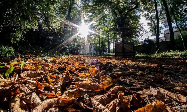 Les belles couleurs de l'automne 1