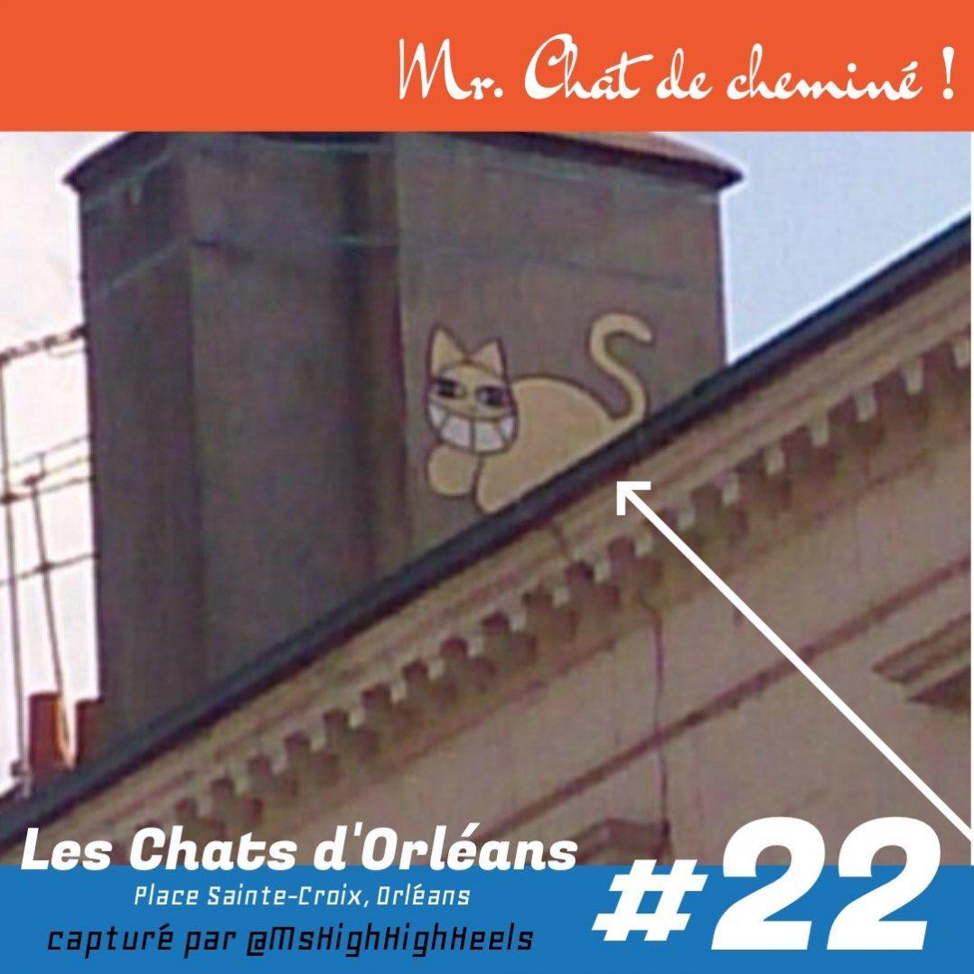 mr chat m chat place sainte croix orléans