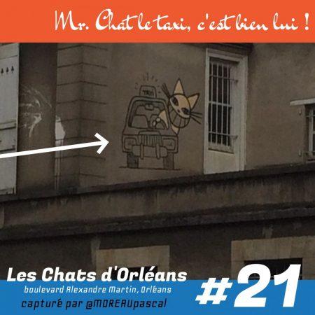 Notre collection de M Chat toujours vivants en 2014 21