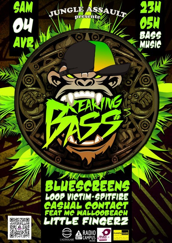 Affiche Breaking Bass 5 jungle assault