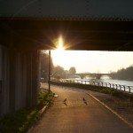 Être matinal pour le canal... 6