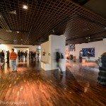 Photos de la nuit au Musée ... des Beaux-Arts 29