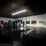 Photos de la nuit au Musée ... des Beaux-Arts 21