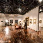 Photos de la nuit au Musée ... des Beaux-Arts 11