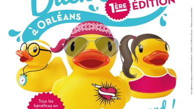 Photo of Duck Race: la course de canard arrive à Orléans