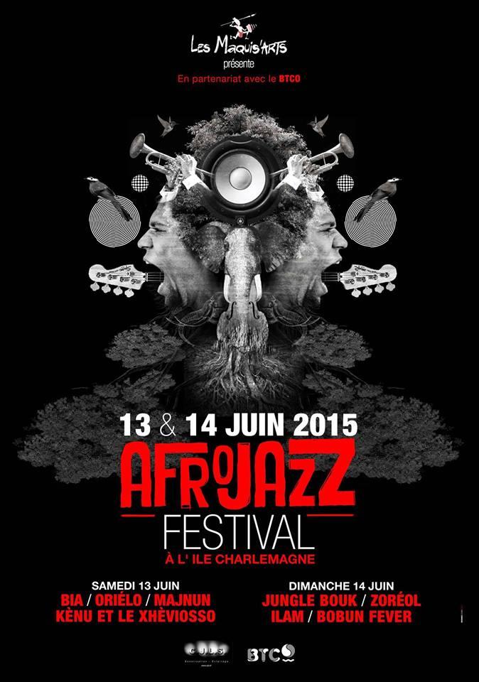 afrojazz festival affiche orléans ile charlemagne juin 2015