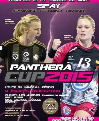 Une Panthera Cup 2015 à l'accent Sarthe ! 1