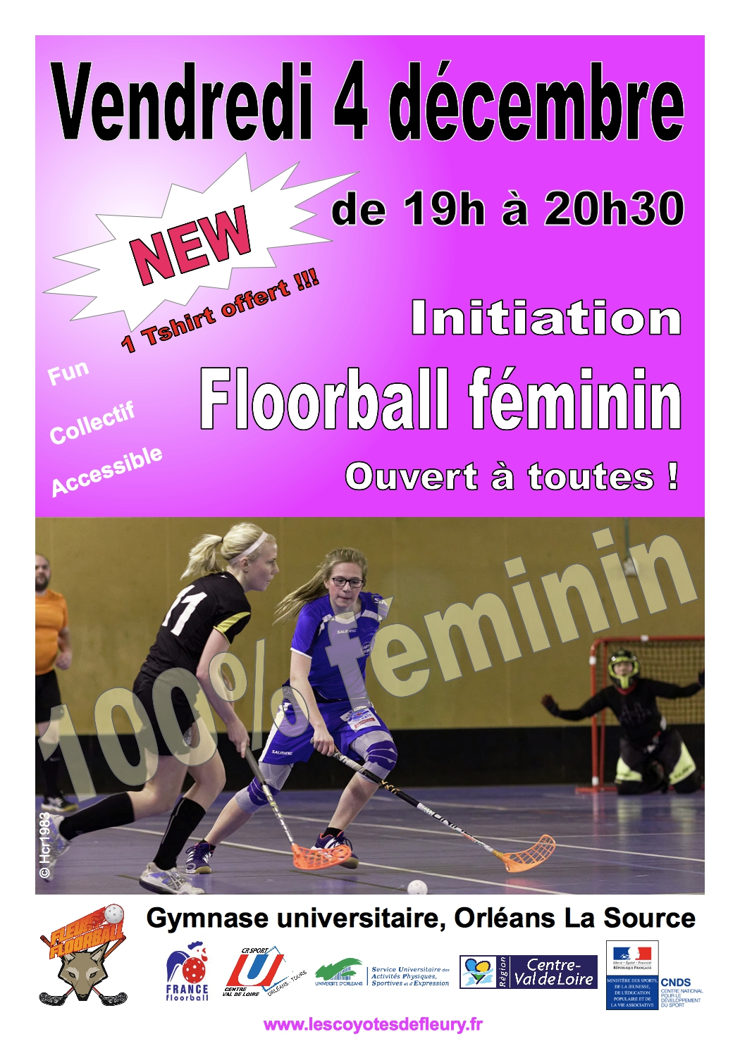 626490_Initiation_feminine