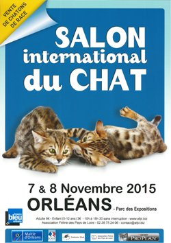 salon international du chat
