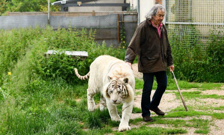 On a rencontré Rémy Demantes et ses tigres 1