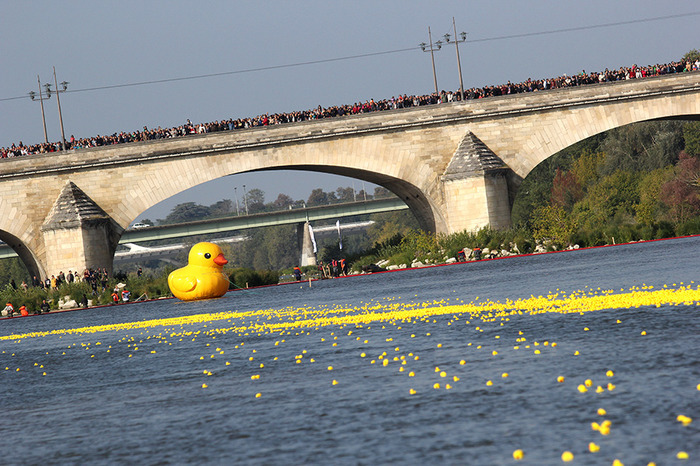 35 000 canards au départ de la DUCK RACE 2019 ! 12