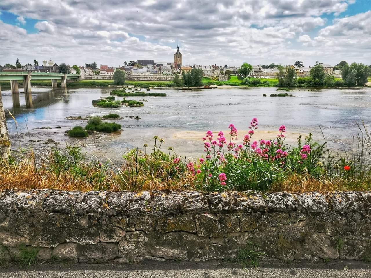 La Loire de Jargeau à Saint-Denis 1