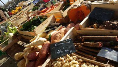 Les marchés ouverts à Orléans et dans sa métropole 12
