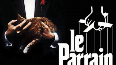 Photo of Un jour un film : Le Parrain