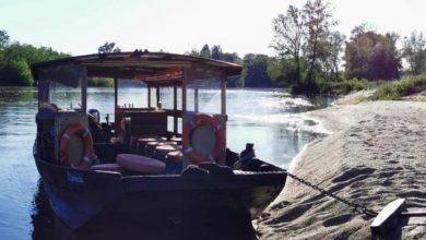 Traversez la Loire en navette BatOLoire dès demain 1