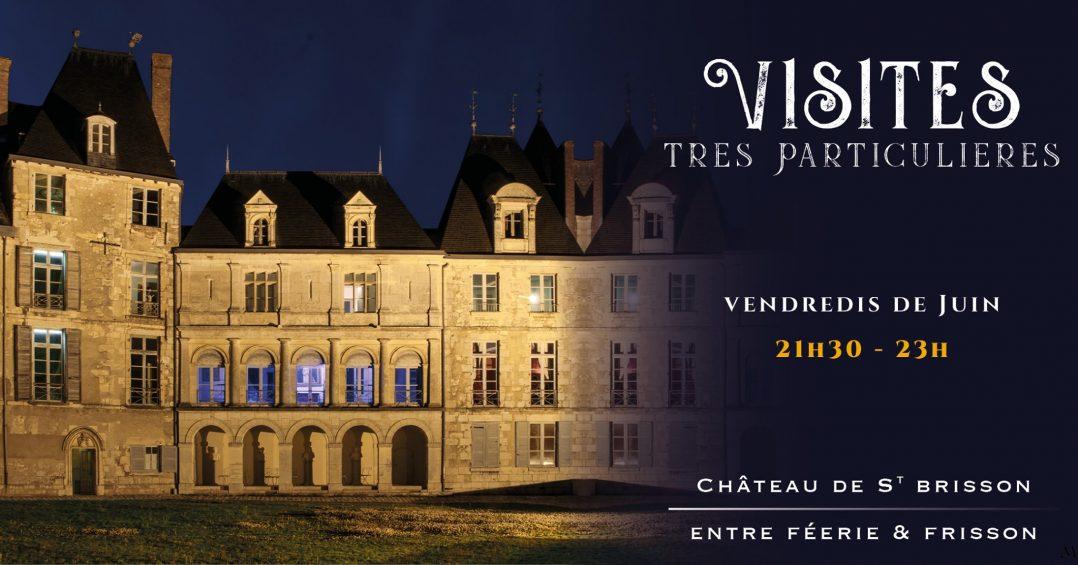 Découvrez le château de Saint-Brisson-sur-Loire en pleine nuit 2