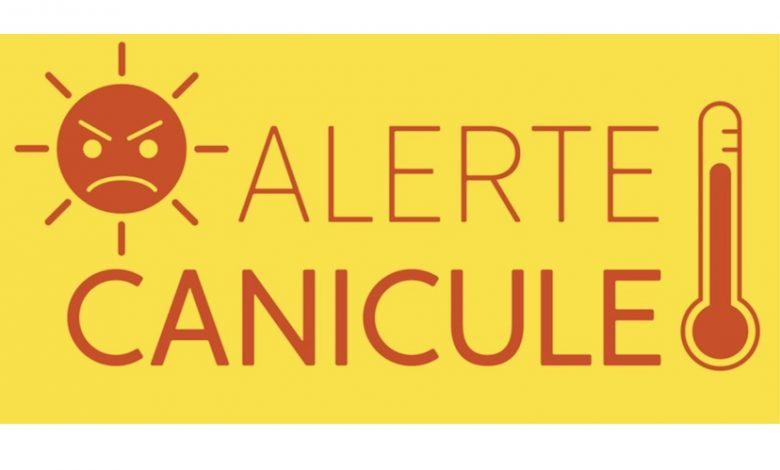 Plan canicule : la mairie d'Orléans pleinement mobilisée 1