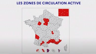 Le Loiret placé en zone de circulation active du virus 35