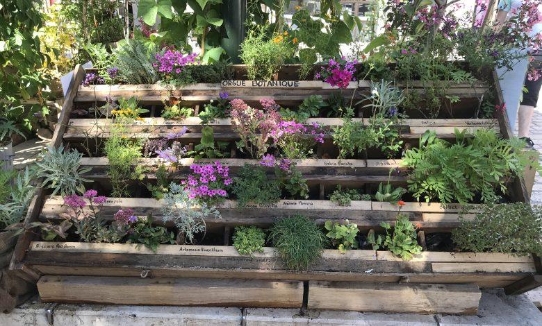A la découverte des Jardins Ephémères 1