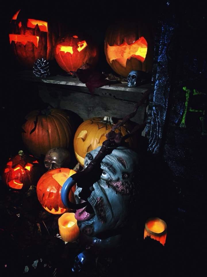 Atelier Halloween : sculpture sur citrouille Jack'O Lantern 8