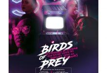 Photo de Birds of prey : un événement en streaming pour lutter contre les violences faites aux femmes et en faveur du planning familial.