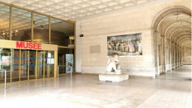 Découvrez les richesses extérieures de nos musées 16