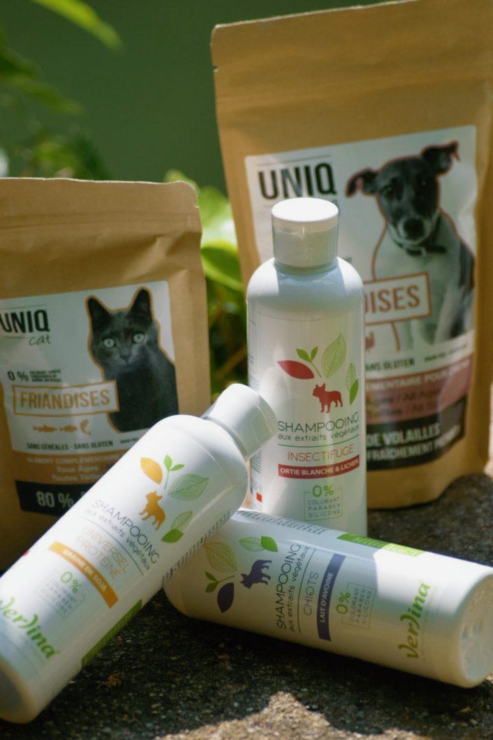 CROCS GOURMANDS : Une alimentation saine qui prend soin des chiens et des chats 9