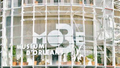 MOBE - MUSÉUM D'ORLÉANS POUR LA BIODIVERSITÉ ET L'ENVIRONNEMENT 26