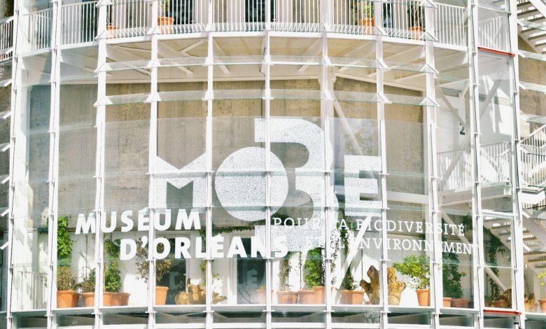 MOBE - MUSÉUM D'ORLÉANS POUR LA BIODIVERSITÉ ET L'ENVIRONNEMENT 1
