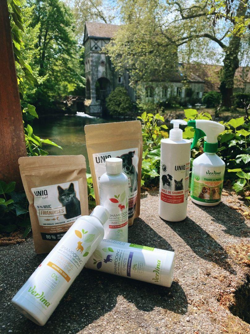 CROCS GOURMANDS : Une alimentation saine qui prend soin des chiens et des chats 6