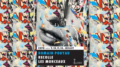 Romain Pouyau recolle les morceaux : nouvelle exposition ! 6