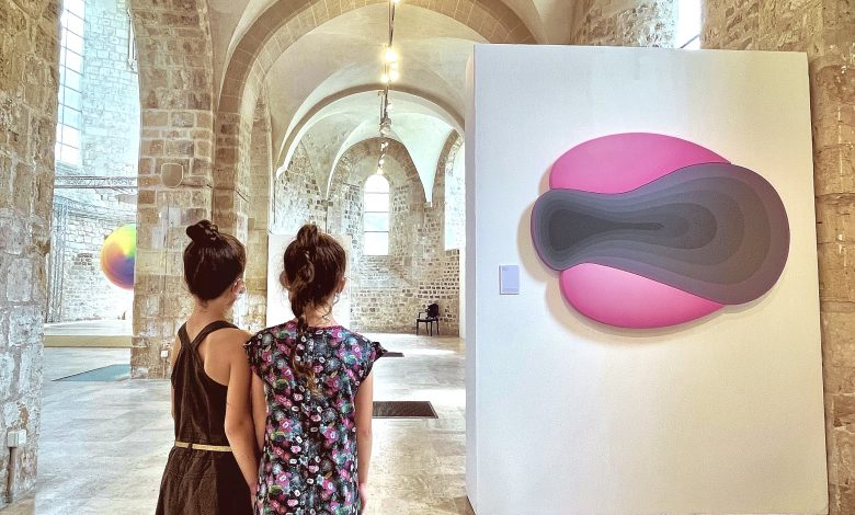 DIVERTIMENTO : l'exposition à voir absolument en la collégiale Saint-Pierre-le-Puellier 1