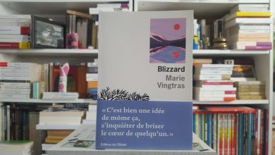 Blizzard de Marie Vingtras, un premier roman au plus près des douleurs 18