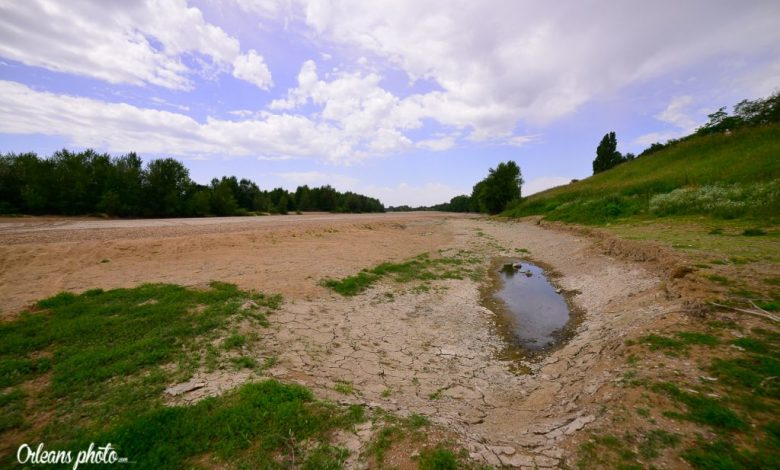 Photos du jour : la cote de la Loire est à -80cm 1